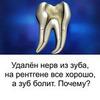 реклама в блоге Лилия Кузьменкова