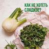 реклама в блоге Ольга Лукьянова