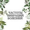реклама в блоге Екатерина Нефельд