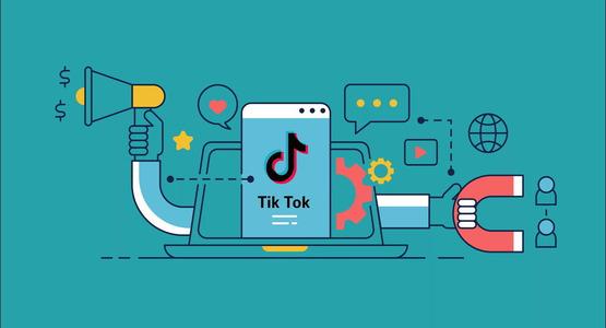 TikTok запускаразовательный ресурс и поощряет преподавателей