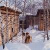 новое фото Дарья Пушкарева