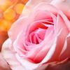 новое фото Ирина beautyss_blogger