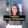 реклама в блоге Юлия Просто