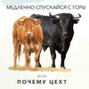 заказать рекламу у блогера Лана Казновская