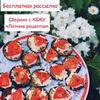 лучшие фото Елена lenka_xydenka